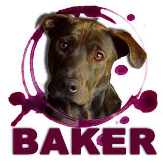 Baker-logo-320